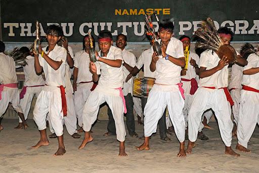 Chitwan Jungle Package Tour - 1 Night 2 Days